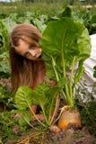 Girl at turnip Royalty Free Stock Images