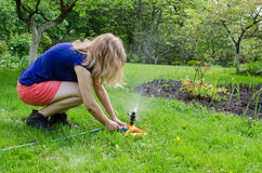 Girl turns garden watering at  flower seedling Stock Photos