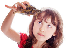 The girl with a turtle Royalty Free Stock Images