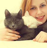 Girl and two cats Stock Photos