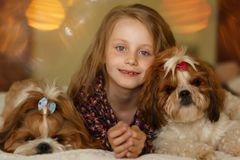 Girl with two cute dogs on the sofa at home. Girl with two cute dogs on the couch at home royalty free stock image
