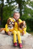 Girl with two dogs shih tzu. The girl in the yellow jacket. Dogs in yellow clothes. Girl walking with a dog. Girl with two dogs shih tzu. The girl in the yellow stock photo