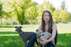 Girl  with two greyhounds in the park Royalty Free Stock Photography