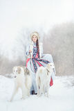 Girl with two greyhounds walking in the winter. Beautiful girl with two greyhounds walking in the winter Royalty Free Stock Photos