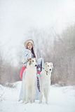 Girl with two greyhounds walking in the winter. Beautiful girl with two greyhounds walking in the winter Stock Image