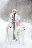 Girl with two greyhounds walking in the winter. Beautiful girl with two greyhounds walking in the winter Royalty Free Stock Image