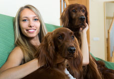Girl with two Irish setters at home Stock Photos