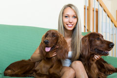 Girl with two Irish setters at home Stock Image