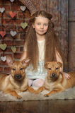 Girl with two puppies Stock Photo