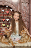 Girl with two puppies Royalty Free Stock Photos