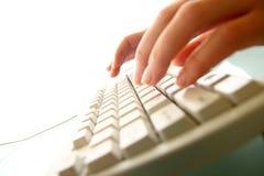 Girl typing Royalty Free Stock Photos