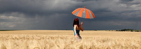 Girl with umbrella at field. Panoramic photo Royalty Free Stock Images