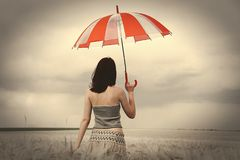 Girl with umbrella at field in rainy day Stock Image