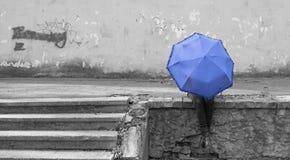 Girl and umbrella stock photo