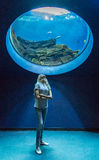 Girl under aquarium Stock Photo