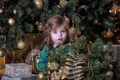 Girl  under the Christmas tree Royalty Free Stock Image