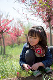 A girl under the peach blossoms Stock Photo