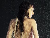 Girl under a rain. Beautiful young girl under a rain Royalty Free Stock Photos