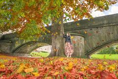 Girl under a tree with falling leaves. Autumn image with a young woman in a modern dress and a black jacket, staying under a tall tree and watching the colorful Royalty Free Stock Image