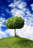 Girl under tree with laptop Stock Photography