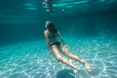 Girl Underwater Surfacing Stock Image