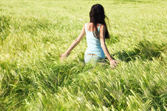 Girl in the unripe barley field Stock Photo