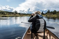 Girl using binocular on Canoe lake of two rivers in the algonquin national park in Ontario Canada on sunny cloudy day Royalty Free Stock Photo