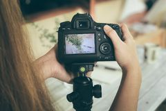 Girl Using Photography of Camera of Flower Vase. Girl Using Photography of Camera of Flower Vase on Wood Stock Image