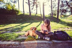 Girl using tablet in the park with a dog royalty free stock photo