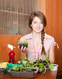 Girl with various seedlings at home Royalty Free Stock Photos