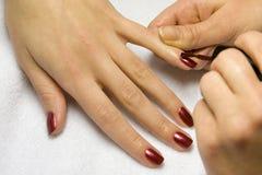 The girl varnishs nails Stock Photo