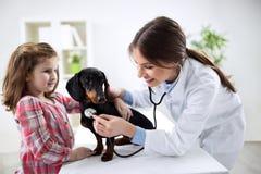 Girl at a veterinarian examining his dog Royalty Free Stock Photography