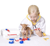 Girl Veterinarian Giving Puppy a Shot in Behind. Young Blond Girl pretending to be a veterinarian uses needle syringe to give a shot to a puppy's behind. Pretend Royalty Free Stock Photography