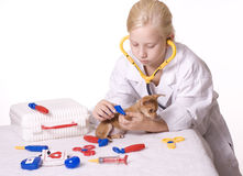 Girl Veterinarian with Puppy and Tweezers. Young Blond Girl pretending to be a veterinarian uses tweezers on the puppy's paw.  Pretend medical equipment on table Stock Photography