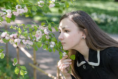 Girl Victoria in the garden Royalty Free Stock Photos