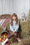 Girl villager and cat on hay stack in barn. Portrait of sincere little blond girl villager sitting near pail with apples and white cat on hay stack in wooden stock photo