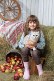 Girl villager with cat near pail, apples. Portrait of friendly little blond girl villager sitting with white cat on hands near stacks of hay, pail of apples in Royalty Free Stock Photography