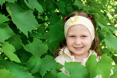 Girl among the vine leaves Stock Image