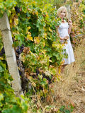 Girl in vineyard Royalty Free Stock Photo