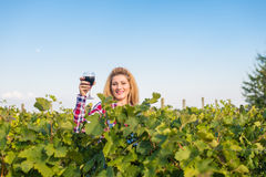 The girl in the vineyard. The girl and the guy in the vineyard drink red wine Stock Photos
