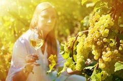 Girl in the vineyards Stock Image
