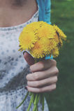 Girl in vintage dress holding bunch of yellow dandelions Royalty Free Stock Images
