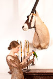 Girl in Vintage dress with oryx and bird Stock Images