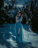 Girl in vintage dress Stock Photos