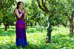 Girl in violet dress with apple Stock Images