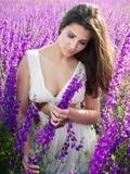 Girl in violet field Royalty Free Stock Photo