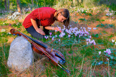 Girl, Violin  and Forests Flowers Stock Photos