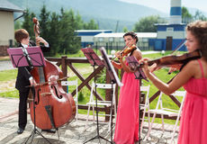 Girl violinist and bassist guy play outdoors Stock Image
