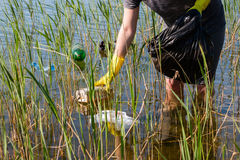 Girl volunteer cleans the pond from garbage Royalty Free Stock Photos