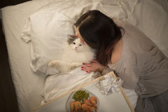 Girl wakes cat in the morning Stock Images
